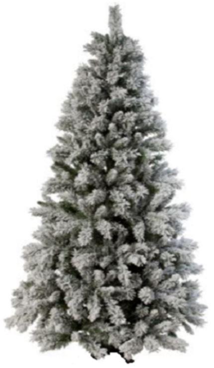 Cây thông noel phủ tuyết