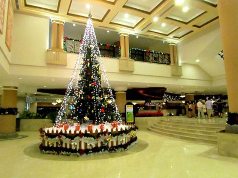 Trang trí cây thông noel cho khách sạn